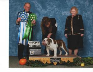 CHEROKEE LEGEND JOHN HENRY Bulldog Club of America National Specialty Best of Winners
