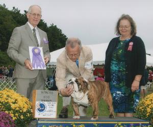 CHEROKEE LEGEND DARNELL  Bulldog Club of New England Specialty Show Winners Dog