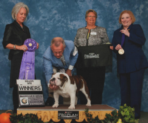 CHEROKEE LEGEND JOHN HENRY Bulldog Club of America National Specialty Winners Dog